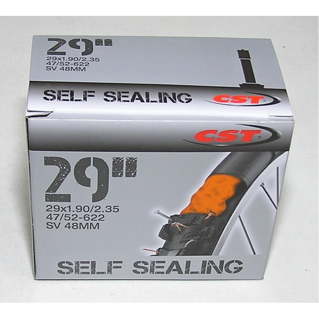 CST 29x1,9/2,35 AV (SV) 48mm Self Sealing